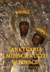 Okładka książki Sanktuaria i miejsca kultu w Polsce Joanna Werner