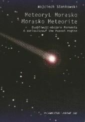 Okładka książki Meteoryt Morasko. Osobliwość obszaru Poznania Wojciech Stankowski