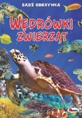Okładka książki Wędrówki zwierząt Robert Jacek Dzwonkowski