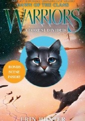 Okładka książki Warriors: Dawn of the Clans #5: A Forest Divided Erin Hunter