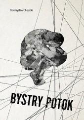 Okładka książki Bystry potok Przemysław Chojecki
