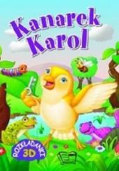 Okładka książki Kanarek Karol. Rozkładanki 3D praca zbiorowa