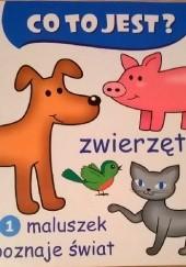 Okładka książki Co to jest? Zwierzęta Szymon Kwiatkowski