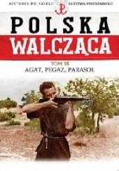 """Okładka książki """"Agat"""", """"Pegaz"""", """"Parasol"""" Robert Szcześniak"""