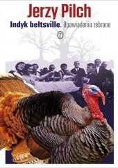 Okładka książki Indyk beltsville. Opowiadania zebrane Jerzy Pilch