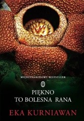 Okładka książki Piękno to bolesna rana Eka Kurniawan