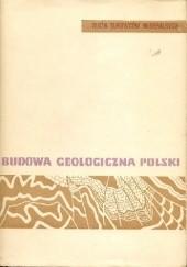 Okładka książki Złoża surowców mineralnych