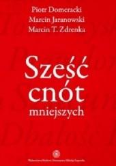 Okładka książki Sześć cnót mniejszych Marcin Jaranowski,Marcin T. Zdrenka,Piotr Domeracki