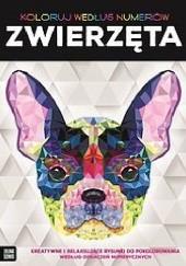 Okładka książki Koloruj według numerów Elizabeth Gilbert