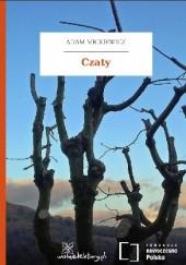 Okładka książki Czaty Adam Mickiewicz