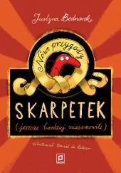 Okładka książki Nowe przygody skarpetek (jeszcze bardziej niesamowite) Daniel de Latour,Justyna Bednarek