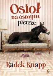 Okładka książki Osioł na ósmym piętrze Radek Knapp