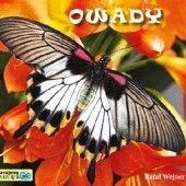 Okładka książki Owady. Poznajemy zwierzęta Rafał Wejner
