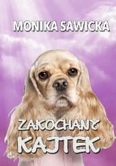 Okładka książki Zakochany Kajtek Monika Sawicka