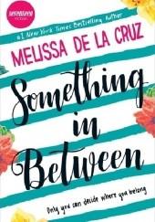 Okładka książki Something in Between Melissa de la Cruz