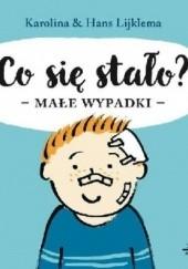 Okładka książki Co się stało? Małe wypadki Karolina Lijklema,Hans Lijklema