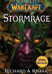 Okładka książki World of Warcraft: Stormrage