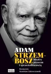 Okładka książki Między prawem i sprawiedliwością Adam Strzembosz,Stanisław Zakroczymski