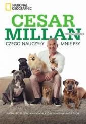 Okładka książki Czego nauczyły mnie psy. Opowieści o czworonogach, które odmieniły moje życie praca zbiorowa