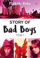 Okładka książki Story of Bad Boys Mathilde Aloha