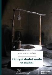 Okładka książki O czym dudni woda w studni Joanna Papuzińska