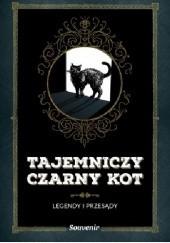 Okładka książki Tajemniczy czarny kot Nathalie Semenuik
