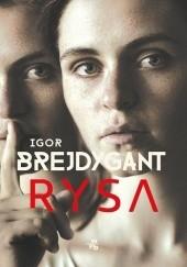Okładka książki Rysa Igor Brejdygant