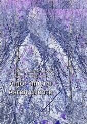 Okładka książki Anioł śmierci. Edycja dwujęzyczna polsko-rosyjska Michaił Lermontow