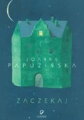 Okładka książki Zaczekaj Joanna Papuzińska