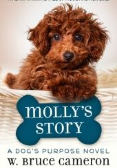 Okładka książki Molly's Story