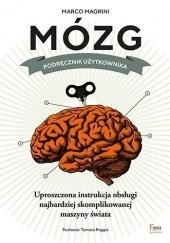 Okładka książki Mózg. Podręcznik użytkownika Marco Magrini