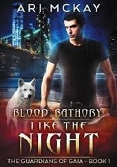 Okładka książki Like the Night Ari Mckay