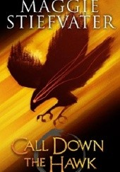 Okładka książki Call Down the Hawk Maggie Stiefvater