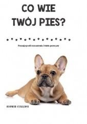 Okładka książki Co wie twój pies? Sophie Collins