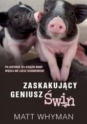 Okładka książki Zaskakujący geniusz świń Matt Whyman