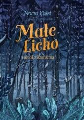 Okładka książki Małe Licho i anioł z kamienia Marta Kisiel