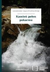 Okładka książki Kamień pełen pokarmu Eugeniusz Tkaczyszyn-Dycki
