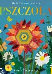 Okładka książki Pszczoła Britta Teckentrup,Patricia Hegarty