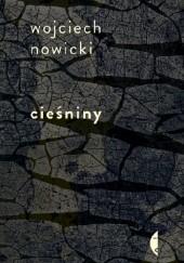 Okładka książki Cieśniny Wojciech Nowicki