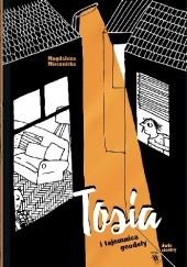 Okładka książki Tosia i tajemnica geodety Magdalena Miecznicka