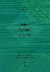 Okładka książki Ułamki Juliusz Słowacki,Adam Wiedemann