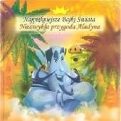 Okładka książki Niezwykła przygoda Aladyna Dorota Skwark