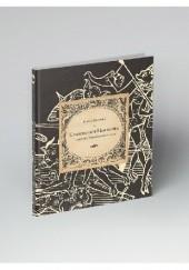 Okładka książki Czarownice Himmlera z niemieckiej kartoteki procesów o czary Bożena Ronowska