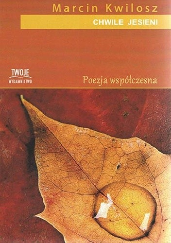 Okładka książki Chwile jesieni Marcin Kwilosz
