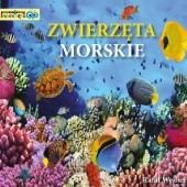 Okładka książki Zwierzęta morskie. Poznajemy zwierzęta Rafał Wejner