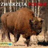 Okładka książki Zwierzęta polskie. Poznajemy zwierzęta Rafał Wejner