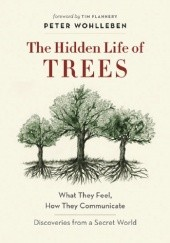 Okładka książki The Hidden Life of Trees: What They Feel, How They Communicate - Discoveries from a Secret World Peter Wohlleben