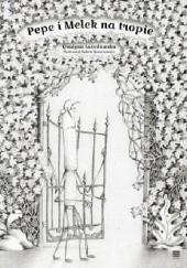 Okładka książki Pepe i Melek na tropie Robert Romanowicz,Grażyna Lutosławska