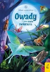 Okładka książki Owady i inne małe zwierzęta