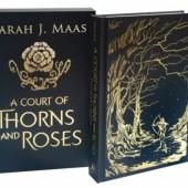 Okładka książki A Court of Thorns And Roses Sarah J. Maas